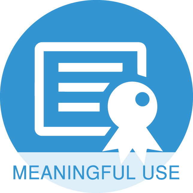 2017 icon meaningful use